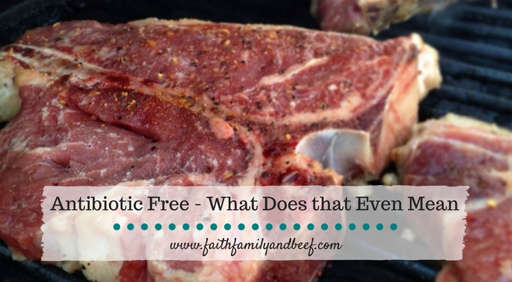 Antibiotic Free – What Does That Even Mean?