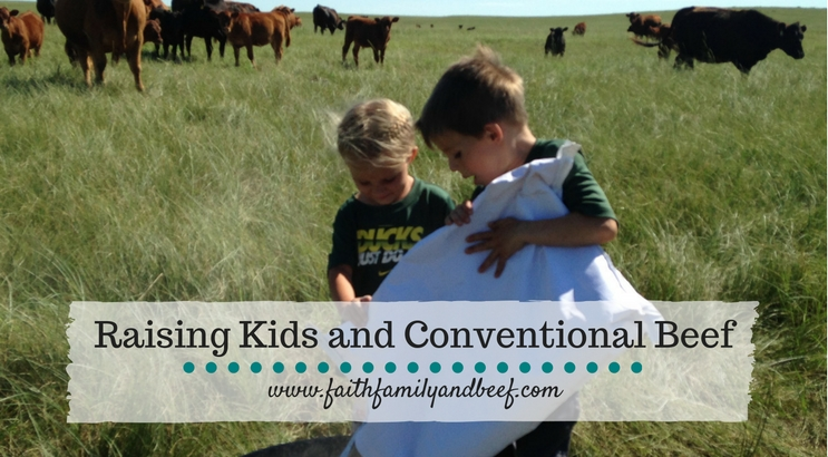 Raising Kids and Conventional Beef