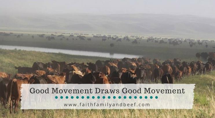 Good Movement Draws Good Movement